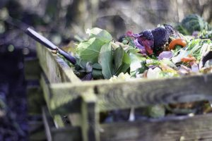 pile of food for composting